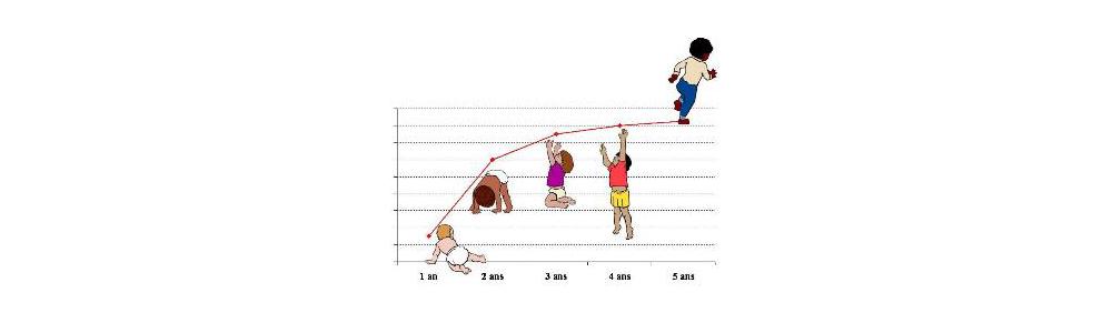 Courbes de croissance des bébés allaités (OMS)